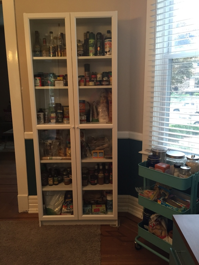 Pantry (and the overflow cart)! We will make the doors opaque at some point - contact paper or something. Not high on the priority list either right now.
